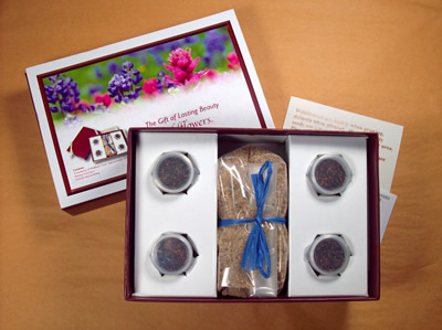 The Gift of Lasting Beauty:  Valentines Wildflower Seed Collection Gift Box